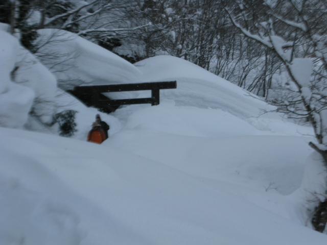 雪に埋もれる 奥社社殿